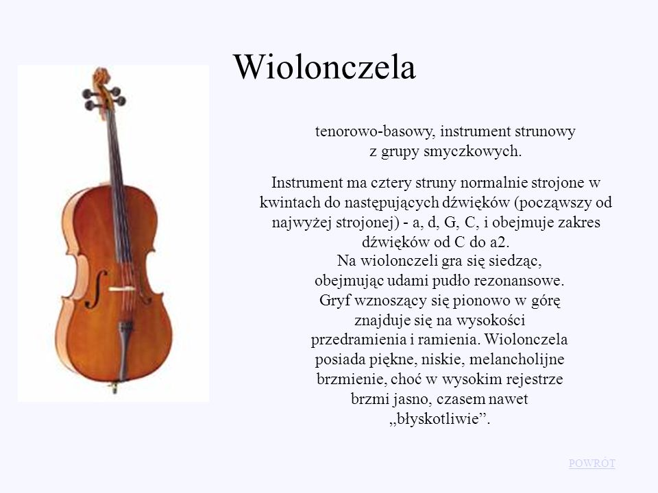 tenorowo-basowy, instrument strunowy z grupy smyczkowych.