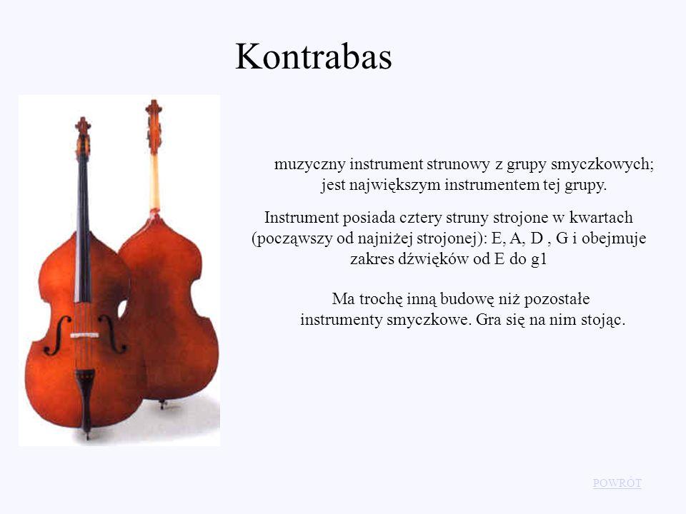 Kontrabas muzyczny instrument strunowy z grupy smyczkowych; jest największym instrumentem tej grupy.