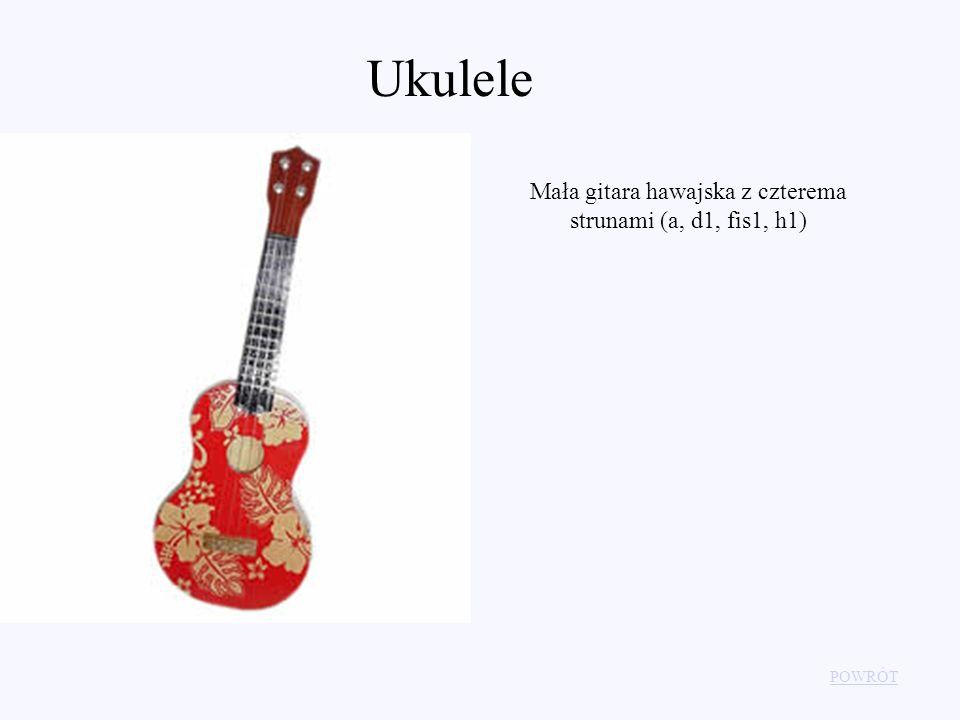 Mała gitara hawajska z czterema strunami (a, d1, fis1, h1)
