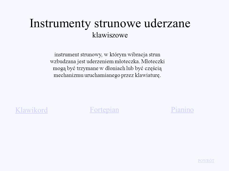 Instrumenty strunowe uderzane klawiszowe