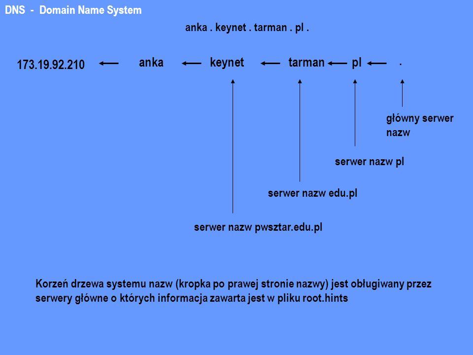 anka keynet tarman pl . 173.19.92.210 DNS - Domain Name System