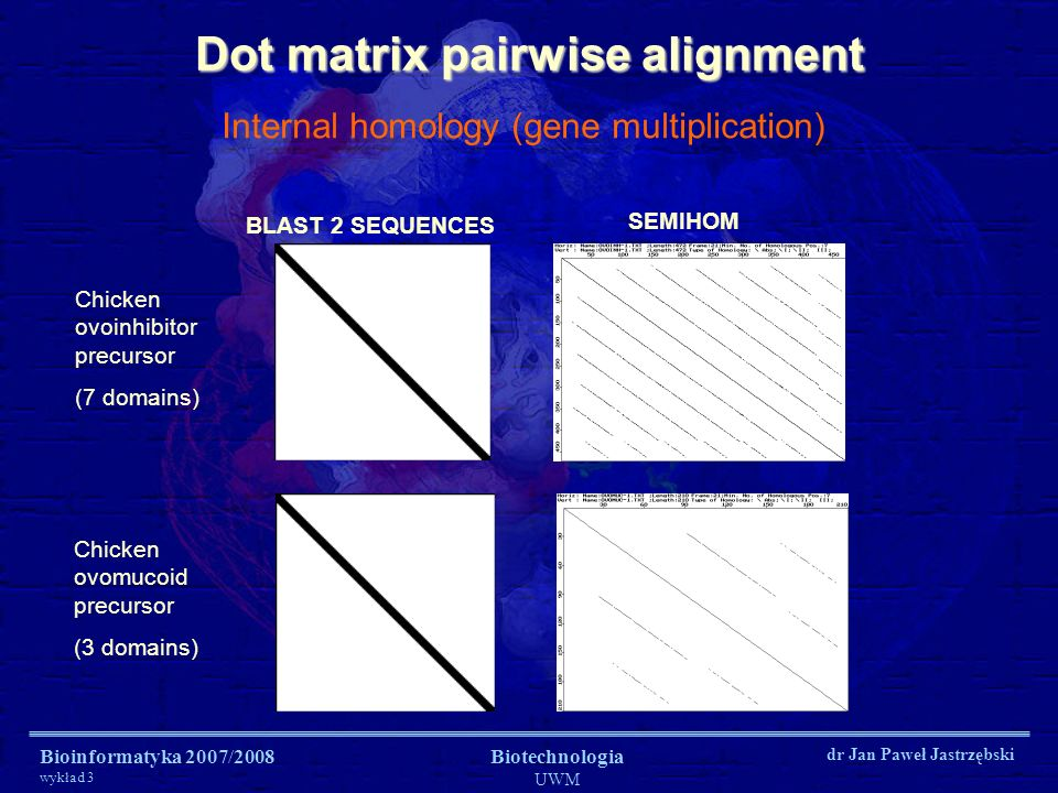 Dot matrix pairwise alignment