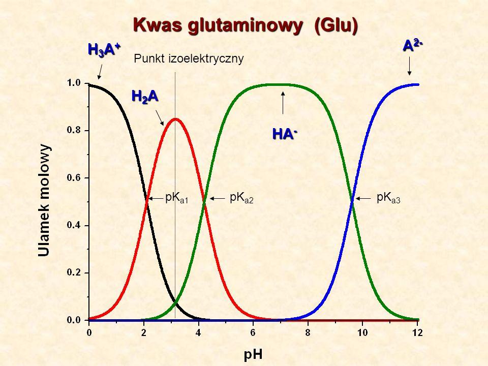 Kwas glutaminowy (Glu)