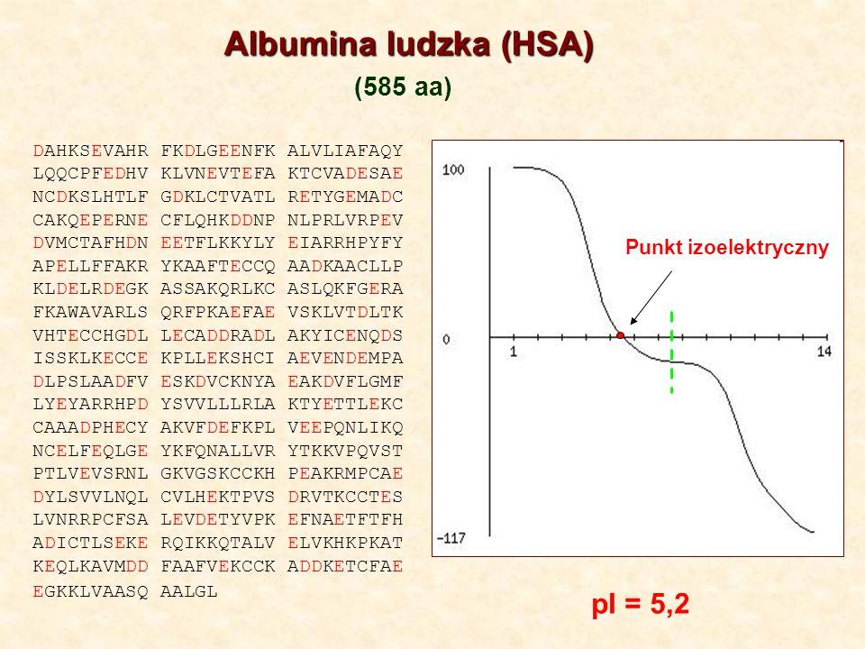 Albumina ludzka (HSA) (585 aa) pI = 5,2 Punkt izoelektryczny