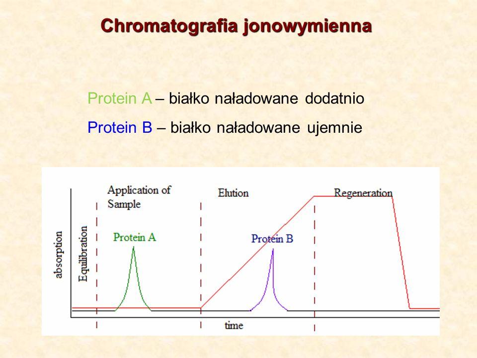 Chromatografia jonowymienna
