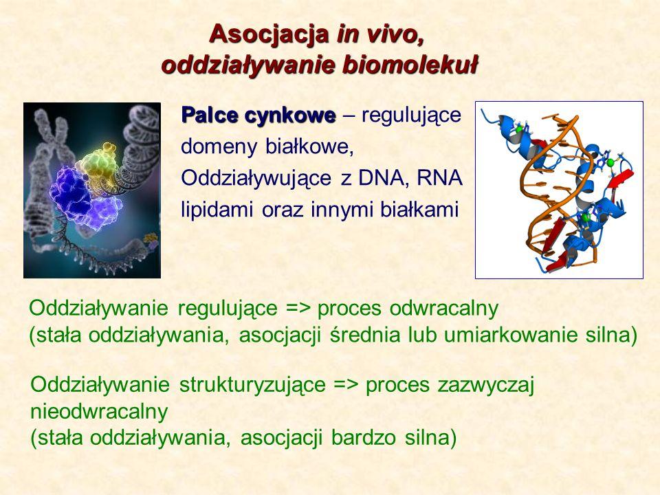 oddziaływanie biomolekuł