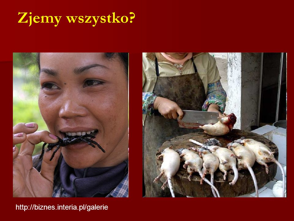 Zjemy wszystko http://biznes.interia.pl/galerie