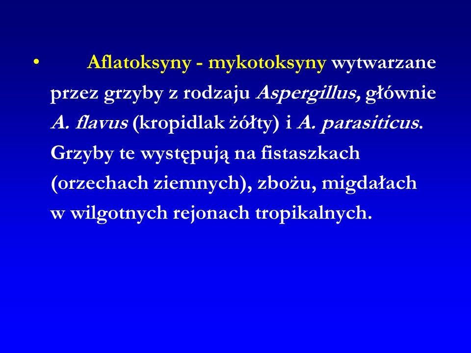 Aflatoksyny - mykotoksyny wytwarzane