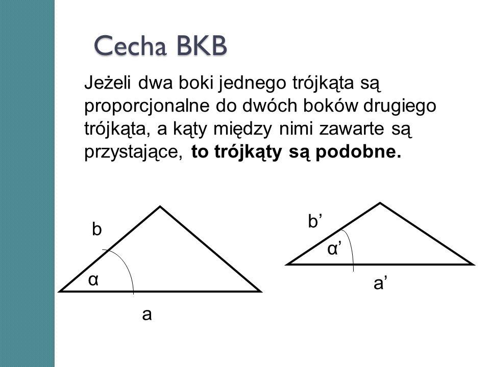 Cecha BKB