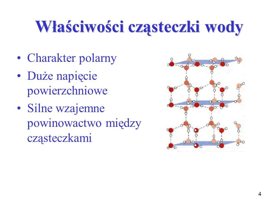 Właściwości cząsteczki wody