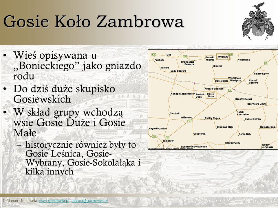 """Gosie Koło Zambrowa Wieś opisywana u """"Bonieckiego jako gniazdo rodu"""