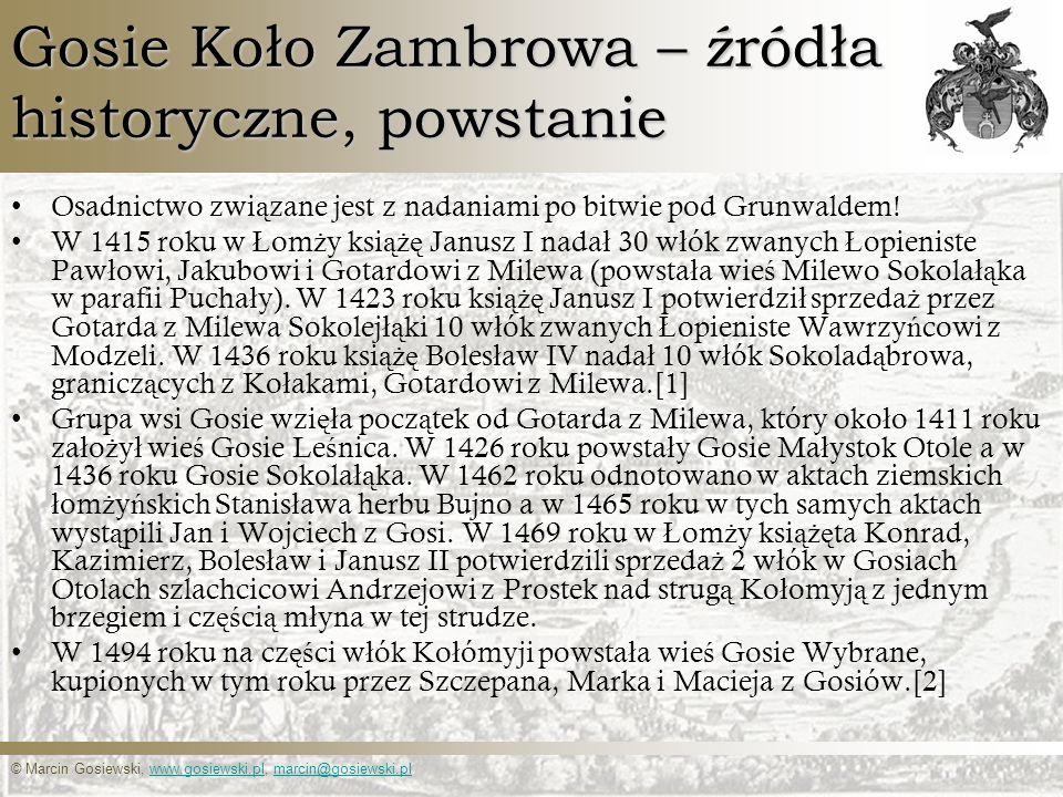Gosie Koło Zambrowa – źródła historyczne, powstanie