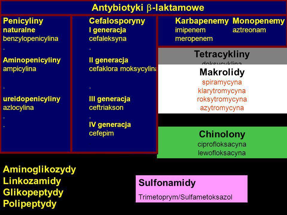 Antybiotyki -laktamowe