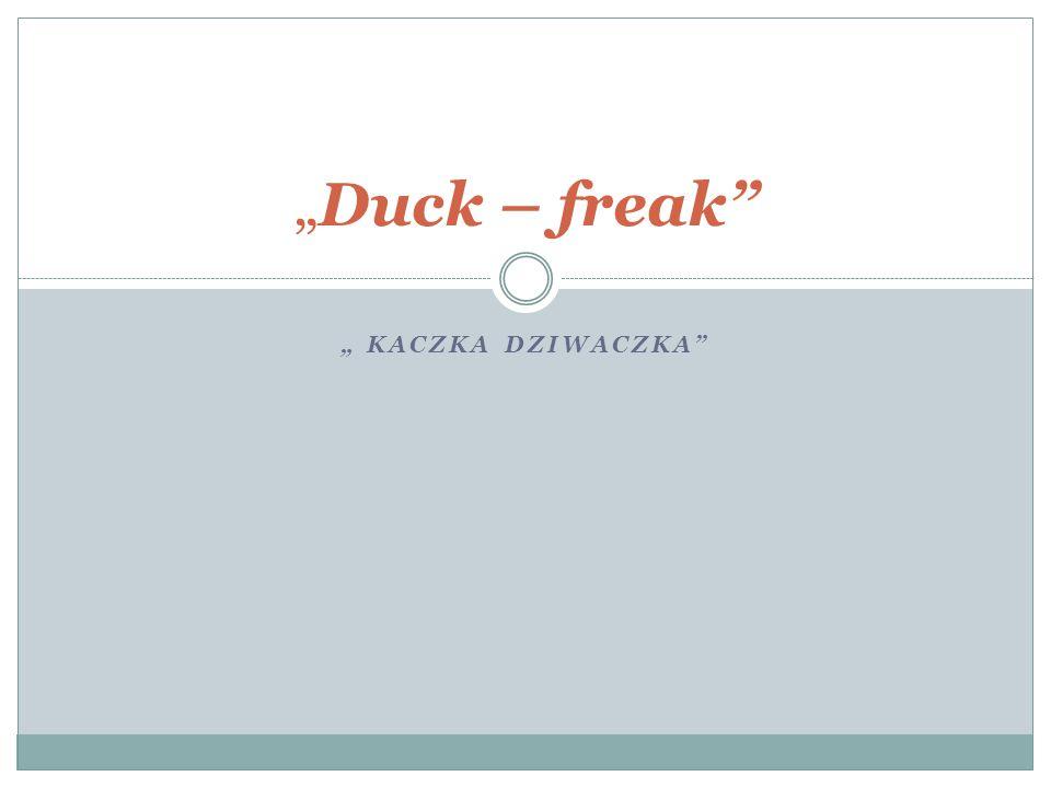 """""""Duck – freak """" Kaczka Dziwaczka"""