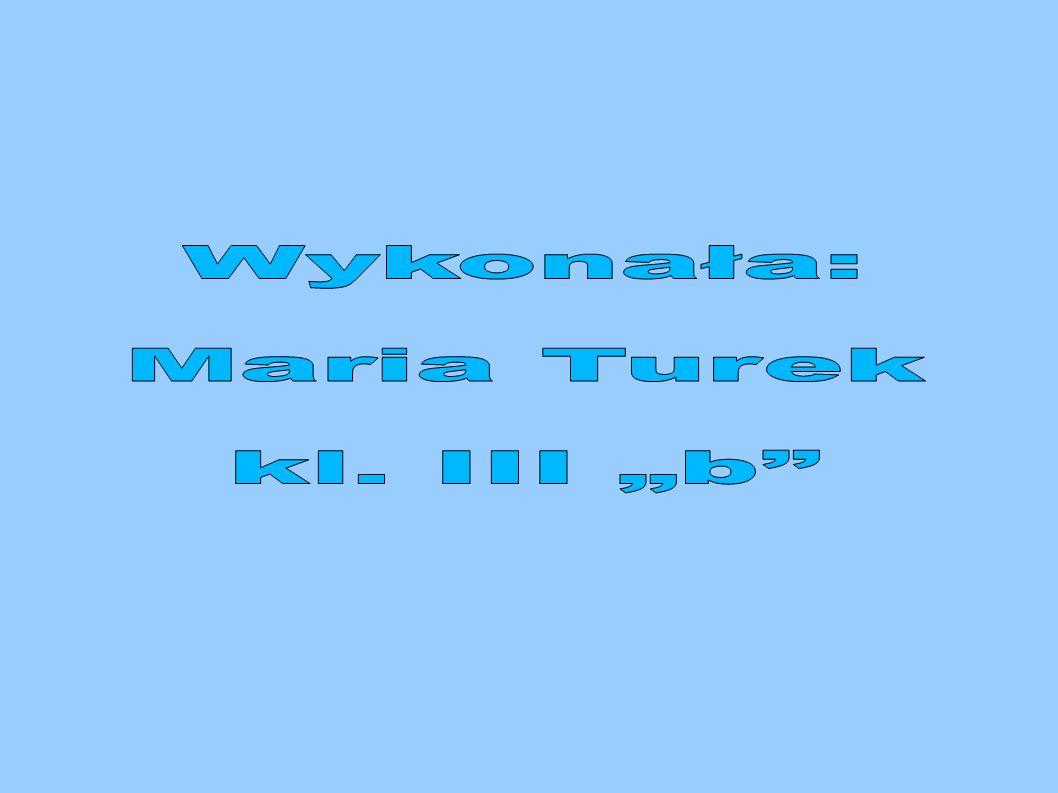 """Wykonała: Maria Turek kl. III """"b"""