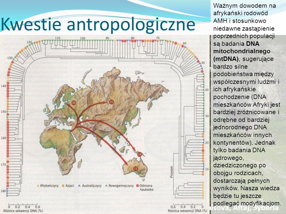 Kwestie antropologiczne
