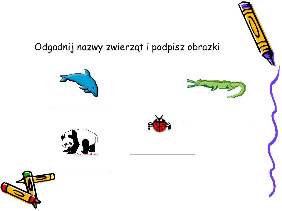 Odgadnij nazwy zwierząt i podpisz obrazki