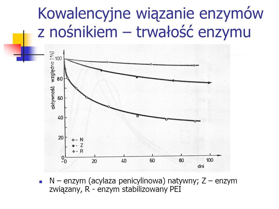 Kowalencyjne wiązanie enzymów z nośnikiem – trwałość enzymu