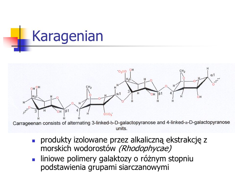 Karagenian produkty izolowane przez alkaliczną ekstrakcję z morskich wodorostów (Rhodophycae)