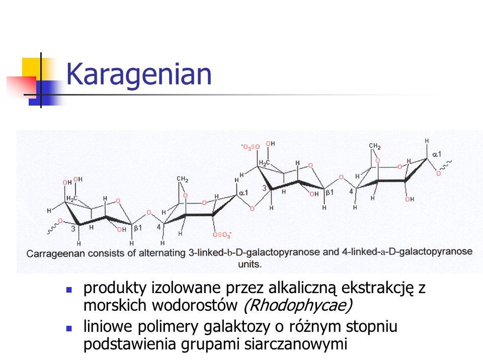 Karagenianprodukty izolowane przez alkaliczną ekstrakcję z morskich wodorostów (Rhodophycae)
