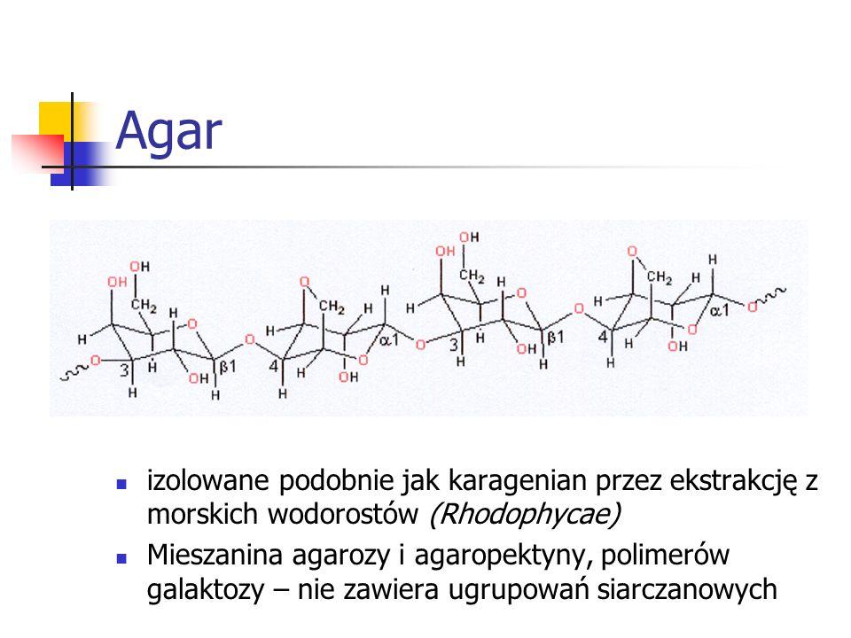 Agarizolowane podobnie jak karagenian przez ekstrakcję z morskich wodorostów (Rhodophycae)