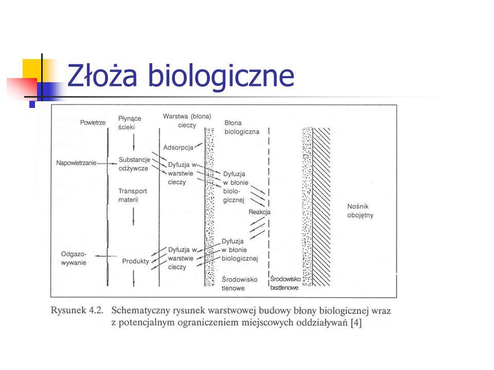Złoża biologiczne
