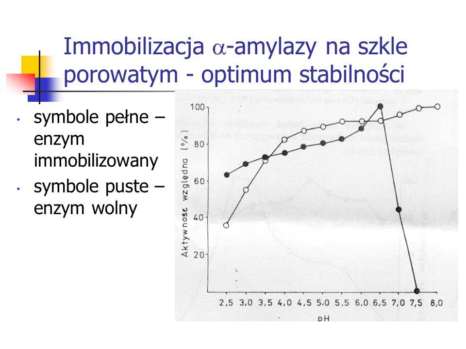 Immobilizacja -amylazy na szkle porowatym - optimum stabilności