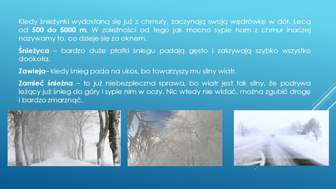 Kiedy śnieżynki wydostaną się już z chmury, zaczynają swoją wędrówkę w dół. Lecą od 500 do 5000 m. W zależności od tego jak mocno sypie nam z chmur inaczej nazywamy to, co dzieje się za oknem. Śnieżyca – bardzo duże płatki śniegu padają gęsto i zakrywają szybko wszystko dookoła. Zawieja– kiedy śnieg pada na ukos, bo towarzyszy mu silny wiatr. Zamieć śnieżna – to już niebezpieczna sprawa, bo wiatr jest tak silny, że podrywa leżący już śnieg do góry i sypie nim w oczy. Nic wtedy nie widać, można zgubić drogę i bardzo zmarznąć.