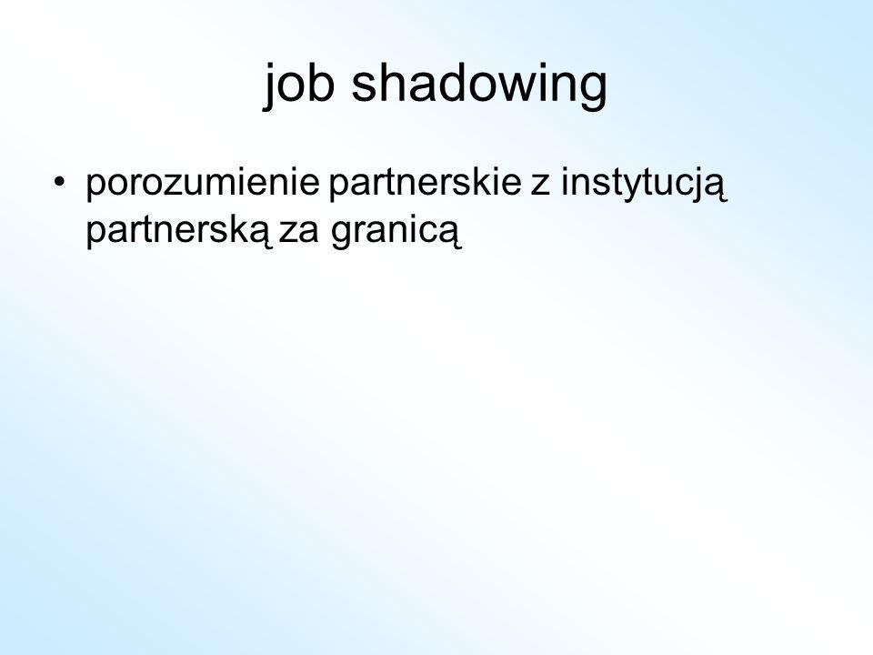 job shadowing porozumienie partnerskie z instytucją partnerską za granicą