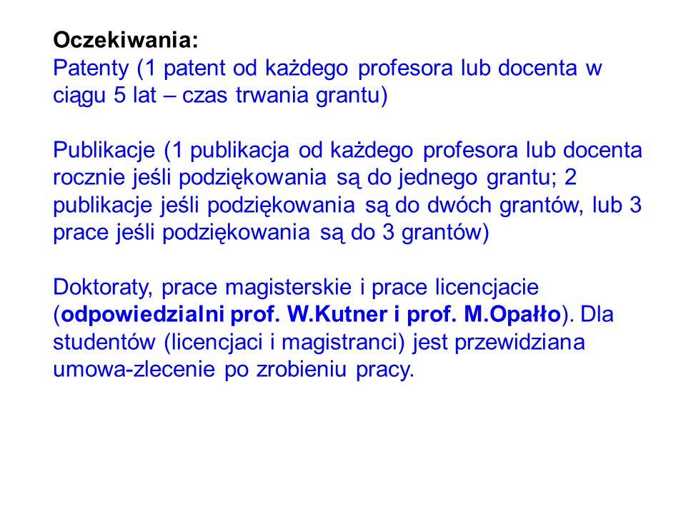 Oczekiwania: Patenty (1 patent od każdego profesora lub docenta w ciągu 5 lat – czas trwania grantu)