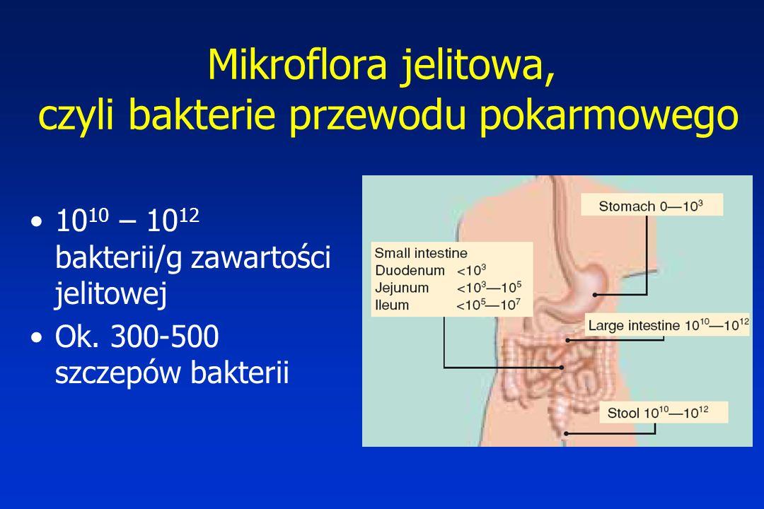 Mikroflora jelitowa, czyli bakterie przewodu pokarmowego