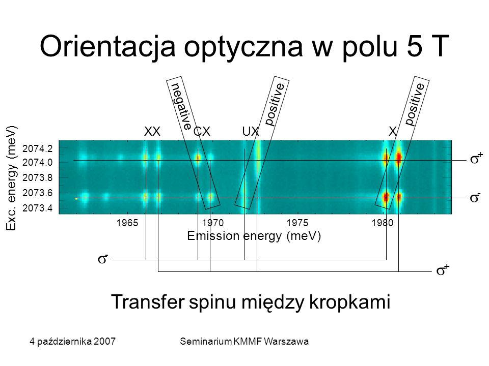 Orientacja optyczna w polu 5 T