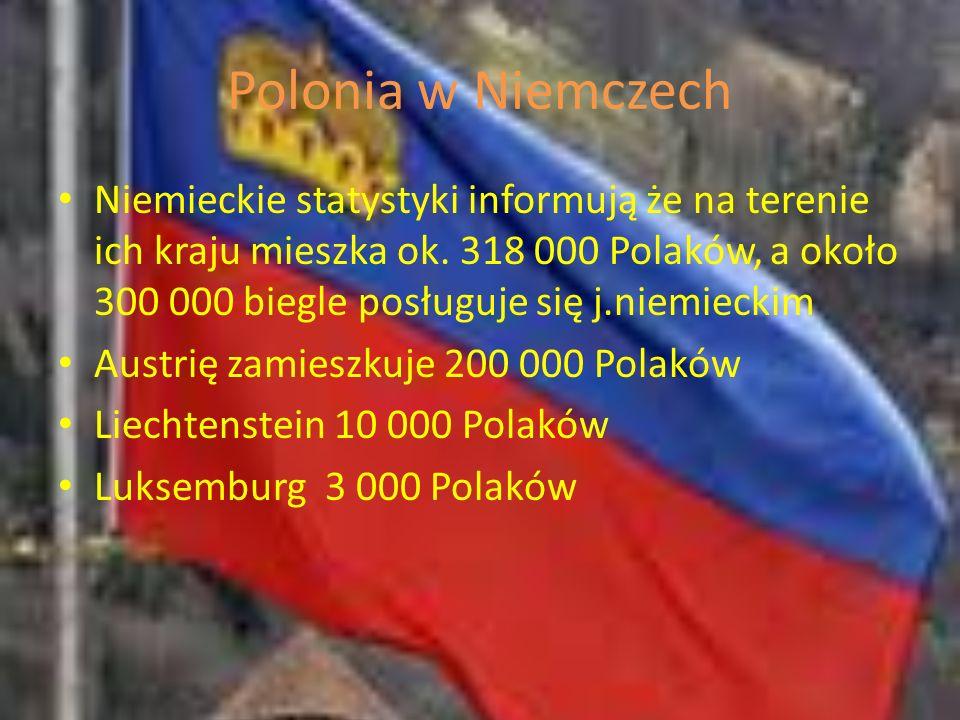 Polonia w Niemczech