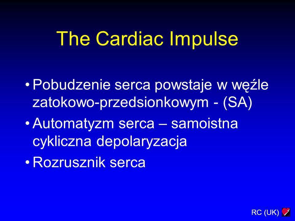The Cardiac Impulse Pobudzenie serca powstaje w węźle zatokowo-przedsionkowym - (SA) Automatyzm serca – samoistna cykliczna depolaryzacja.