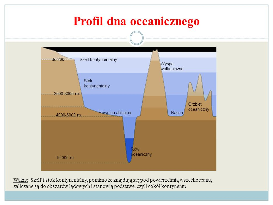 Profil dna oceanicznego