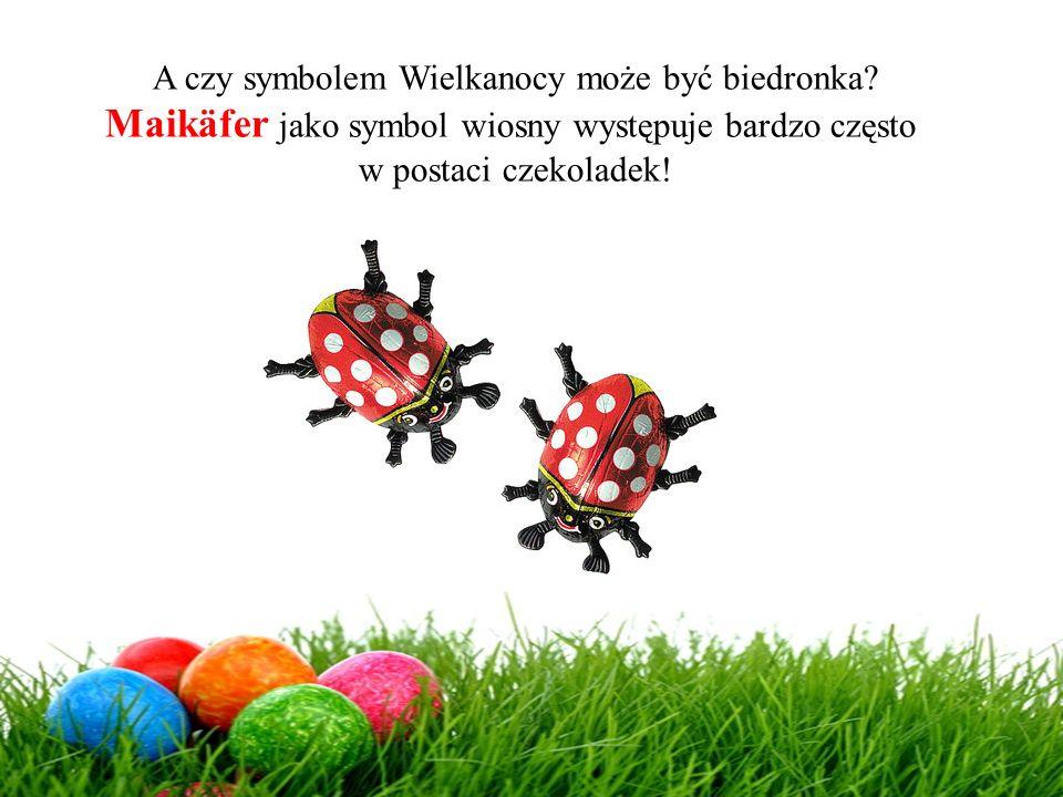 Maikäfer jako symbol wiosny występuje bardzo często