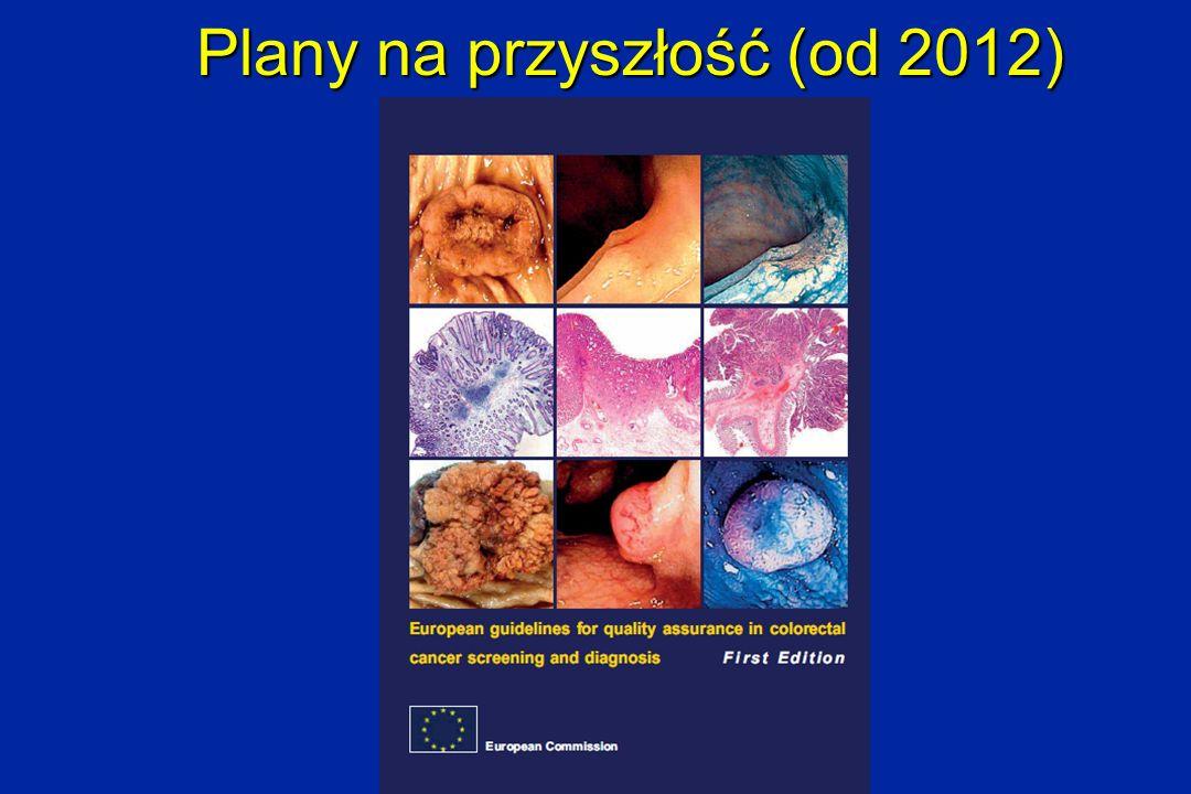 Plany na przyszłość (od 2012)