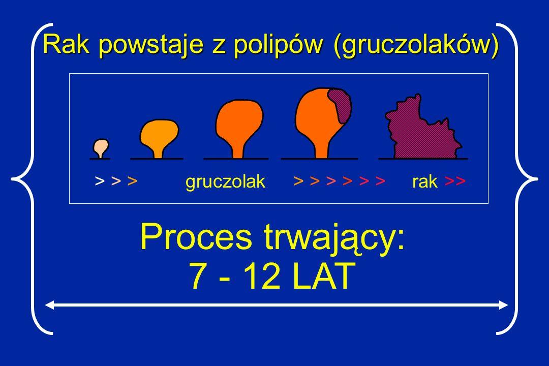 Rak powstaje z polipów (gruczolaków)