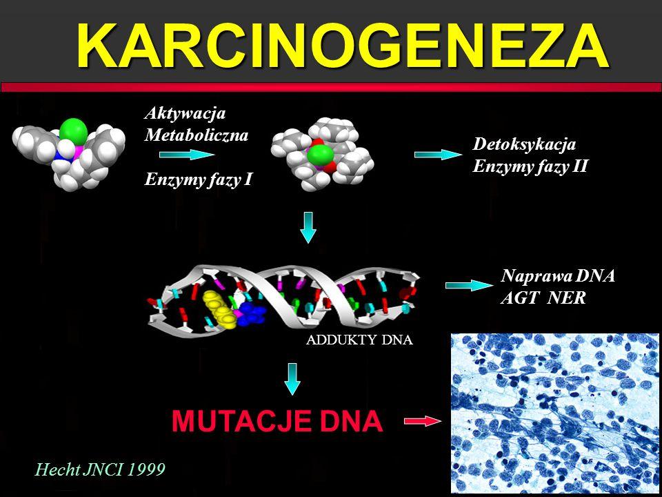 KARCINOGENEZA MUTACJE DNA Aktywacja Metaboliczna Enzymy fazy I