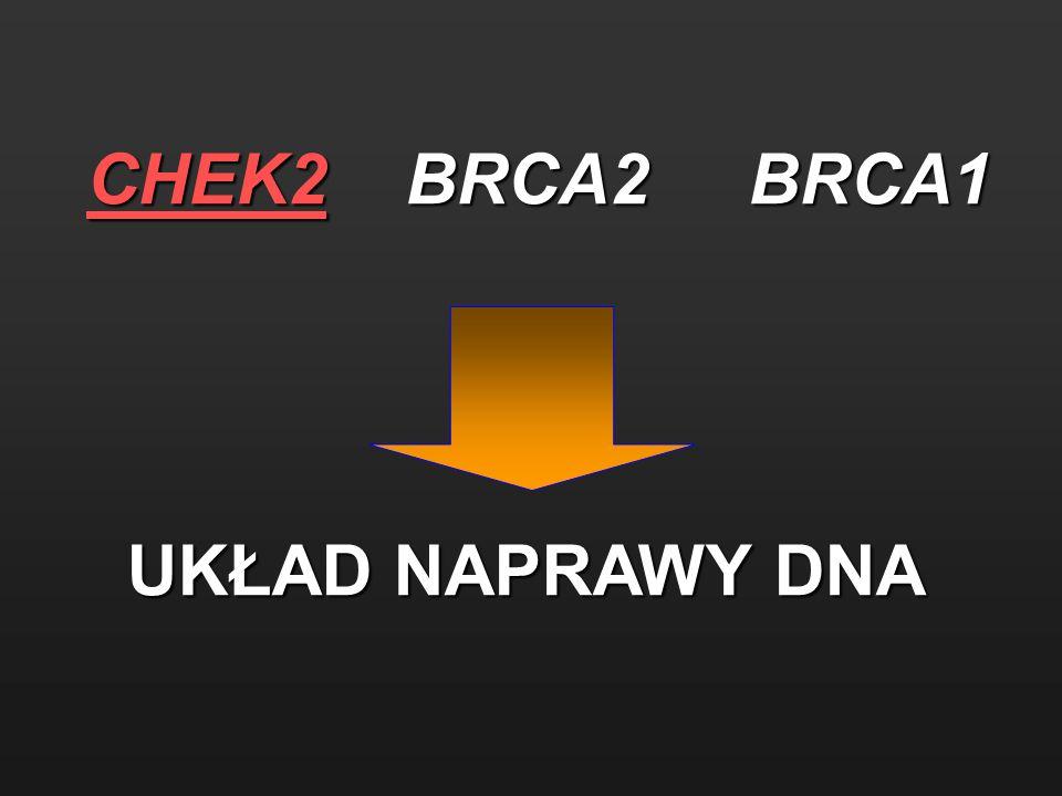 CHEK2 BRCA2 BRCA1 UKŁAD NAPRAWY DNA