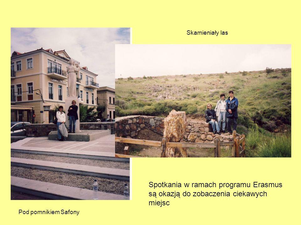 Skamieniały las Spotkania w ramach programu Erasmus są okazją do zobaczenia ciekawych miejsc.