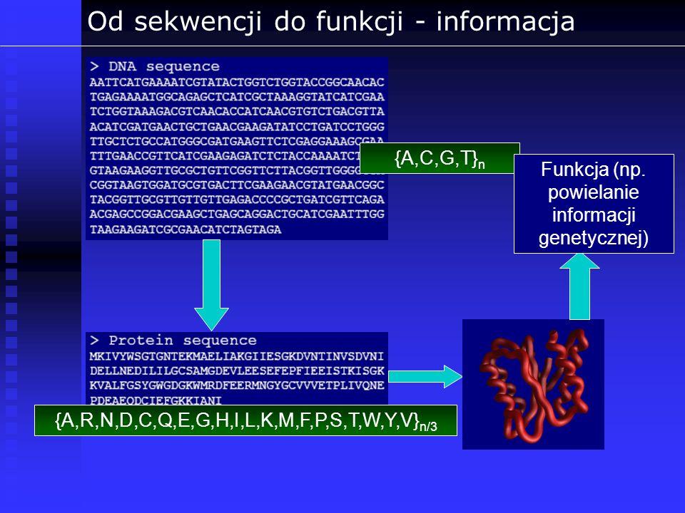 Od sekwencji do funkcji - informacja