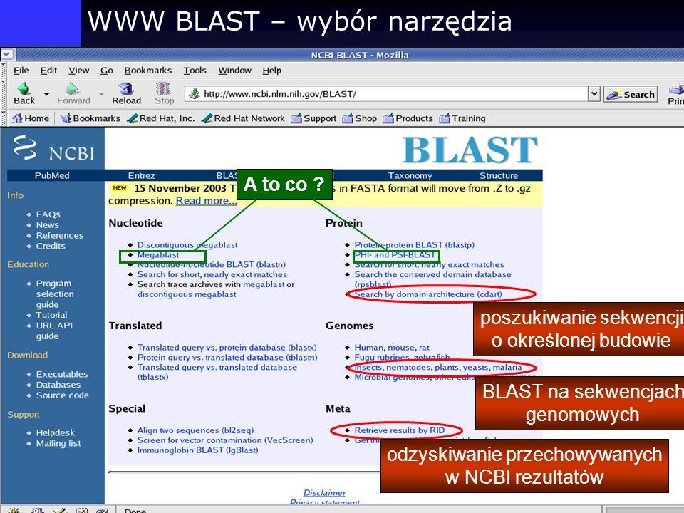 WWW BLAST – wybór narzędzia