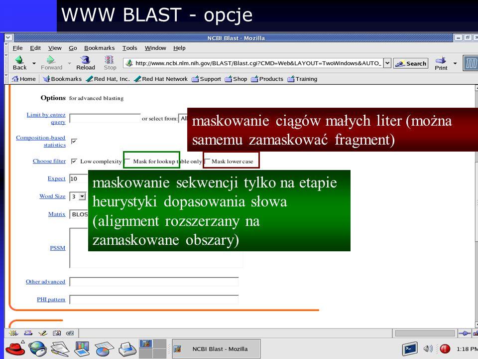 WWW BLAST - opcje maskowanie ciągów małych liter (można samemu zamaskować fragment)