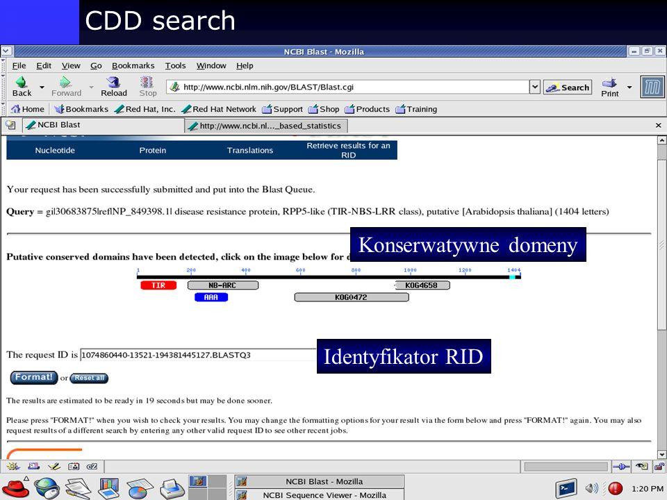 CDD search Konserwatywne domeny Identyfikator RID