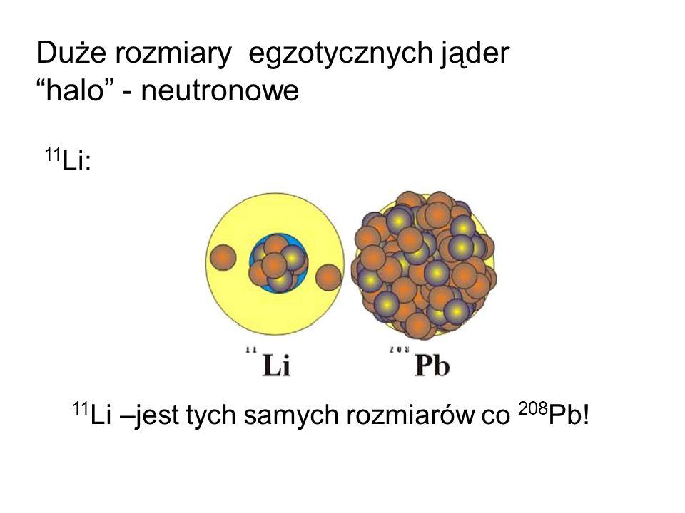 Duże rozmiary egzotycznych jąder halo - neutronowe