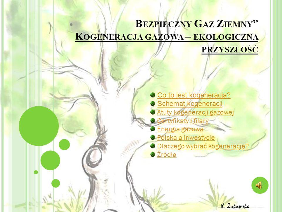 Bezpieczny Gaz Ziemny Kogeneracja gazowa – ekologiczna przyszłość