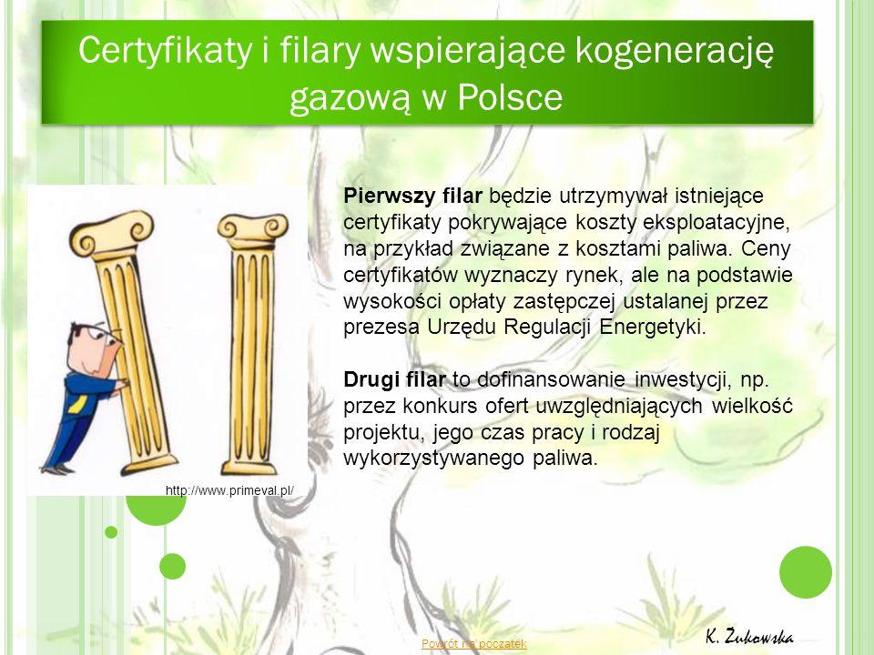 Certyfikaty i filary wspierające kogenerację gazową w Polsce