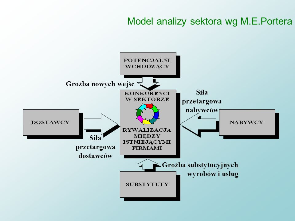 Model analizy sektora wg M.E.Portera