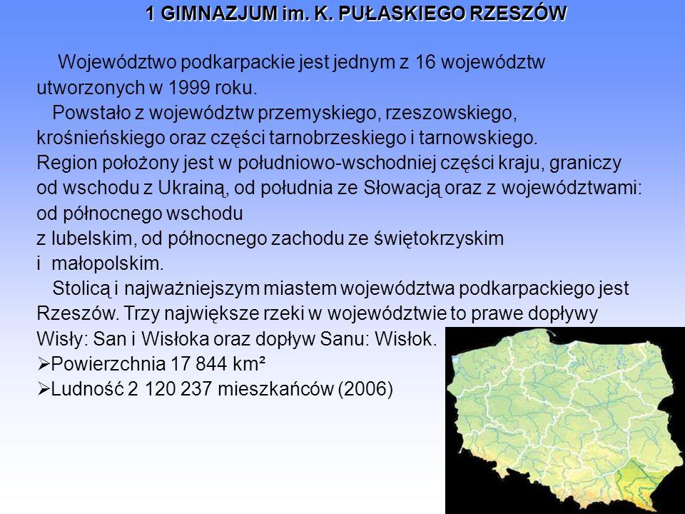 Województwo podkarpackie jest jednym z 16 województw utworzonych w 1999 roku. Powstało z województw przemyskiego, rzeszowskiego, krośnieńskiego oraz części tarnobrzeskiego i tarnowskiego.